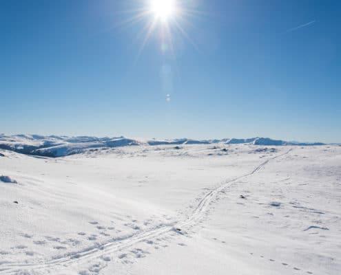 Blick auf Schneelandschaft auf der Nockberge-Trail Skidurchquerung