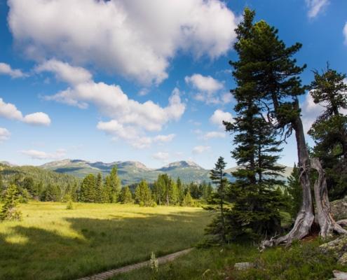 Sommerbild Turracher Höhe an der Nockberge-Trail Wanderroute